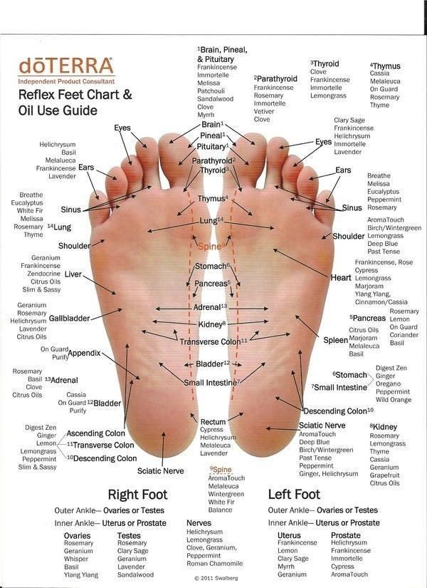 do terra feet